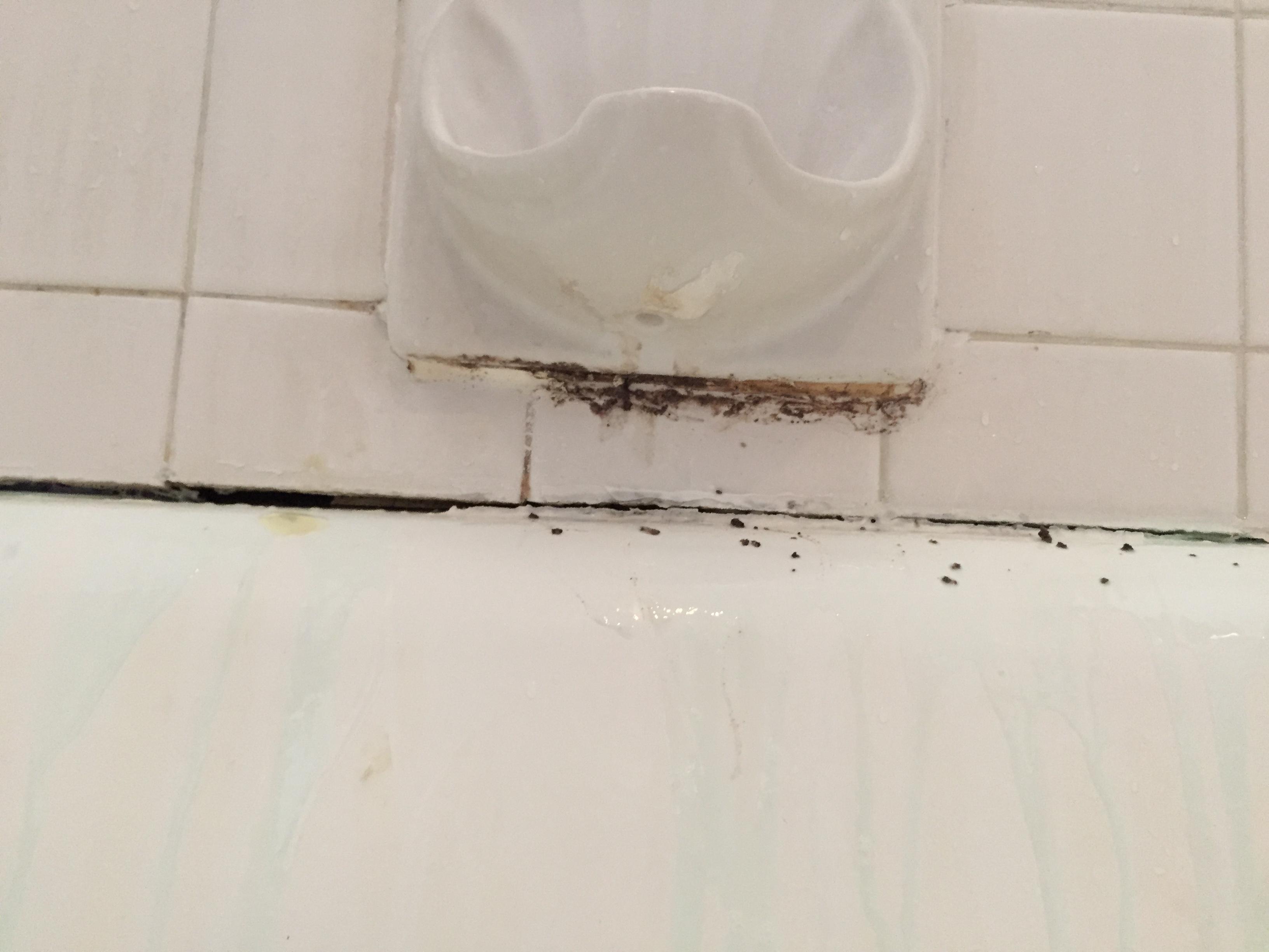 wave bathroom refinishing bathliner nickel w white tile img bp listello river walls hr trim window brushed tub kit rock liners